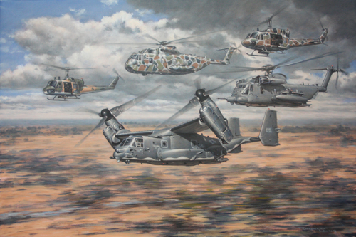 20thSOS helicopters